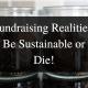 Fundraising Realities - Tara Transform